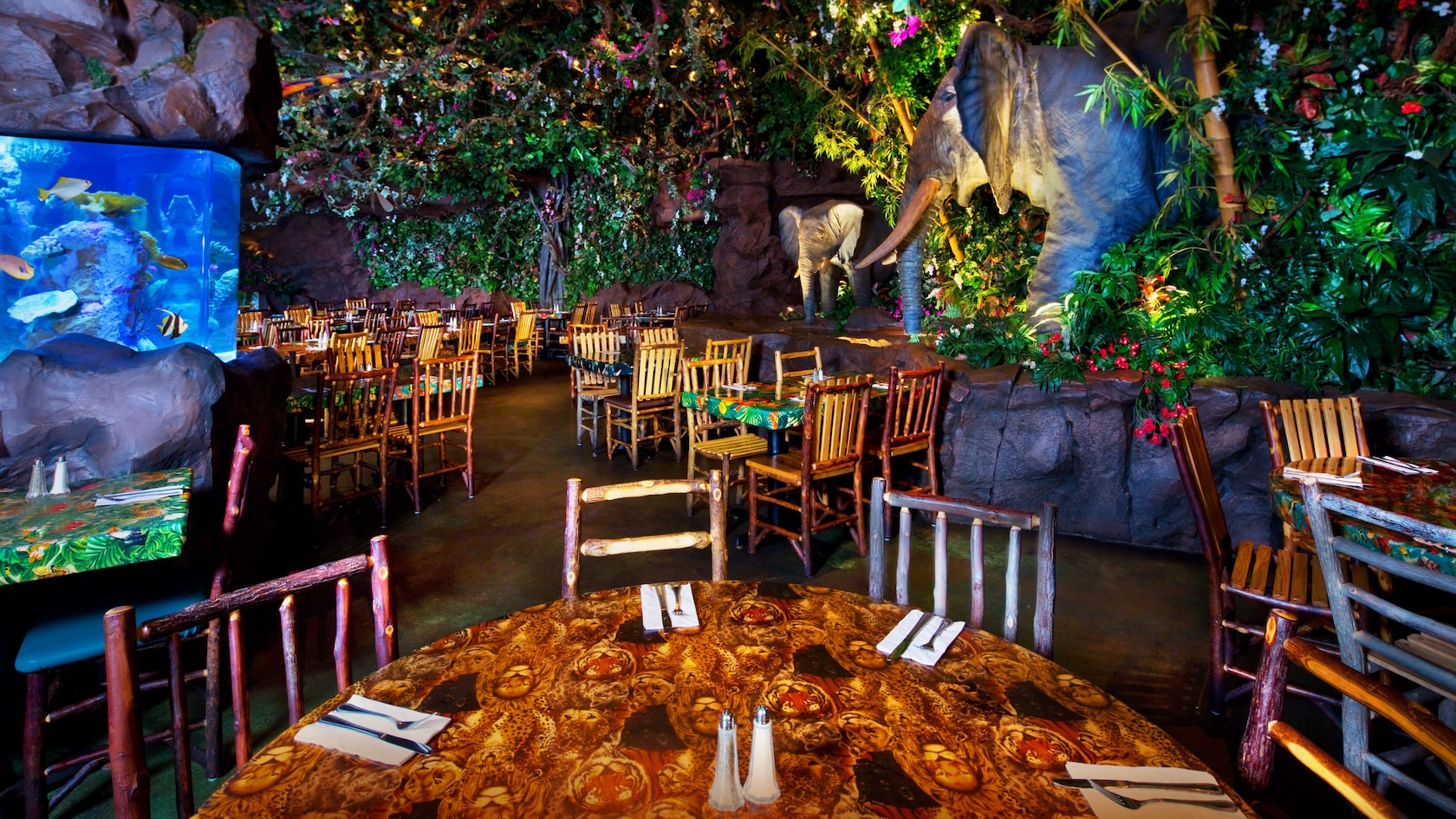 An interior shot of the Rainforest Cafe.