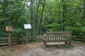 A park bench in the arb waiting to be broken up on