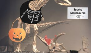 A large T-Rex dressed in a skeleton Halloween costume carrying a trick-or-treat bucket.