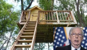 A photo of Mitch McConnell next to a photo of a treehouse.